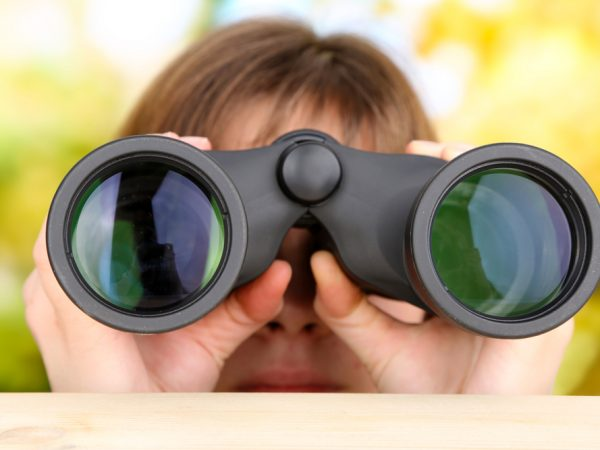 Black modern binoculars in hands on green background, Discovery in Mediation